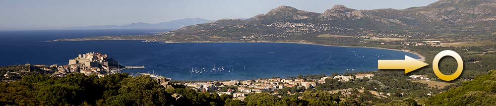 PAN-CALVI-GOOD-ONE